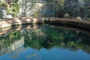 Bodnant Pool 2013